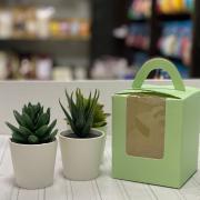 "Коробка на 1 капкейк ""Зеленая"""